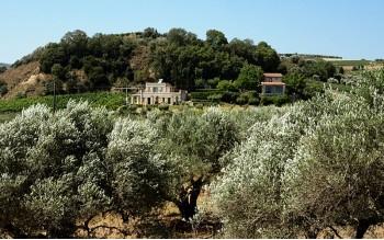 Εκδρομές χορτοφαγικής ωμοφαγίας & γιόγκα στην Κρήτη