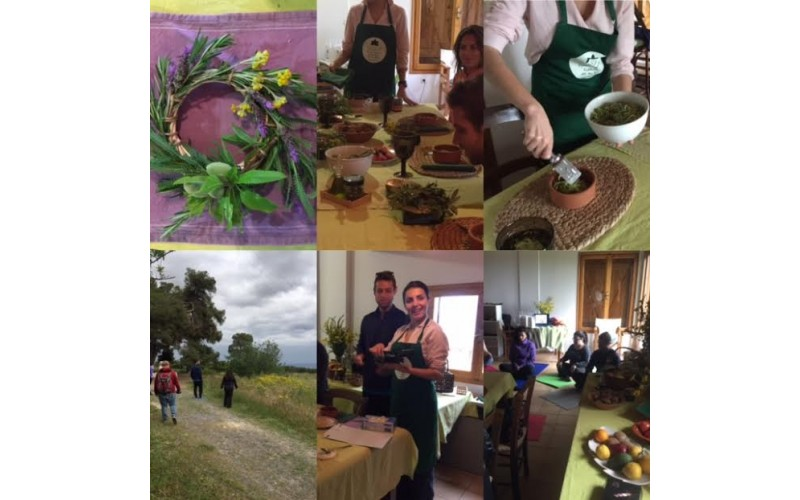 Half day Raw vegan Retreat in our farm